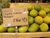 Mango Export