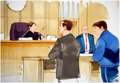 What happens during a court case