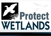 how can people protect the wetlands?