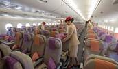 Economy Class A380