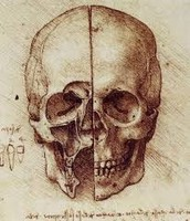 View of a Skull, c. 1489