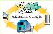 Where & How Is Biodiesel Used?