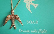 Soar necklace - NOW $35