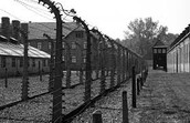 This Is An Example of a Concentration Camp