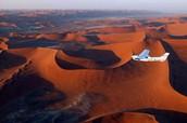 Kalahari Desert🌞