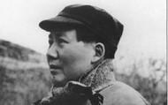 Mao Zendog