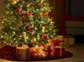 Christmas Presents under the tree!