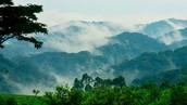 Virunga National Park in Democratic Republic of Congo
