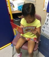 Individual reading