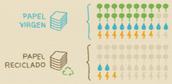 2. ¡268 millones de toneladas de papel virgen son producidas al año!