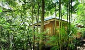 Jungle Walk Bungalow