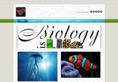 http://bibibiologija.weebly.com