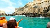 Lima's Palomino, Cabinzas & San Lorenzo Island Cruise