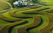 Conservative Farming