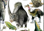 So, why shouldn't we bring back extinct animals?