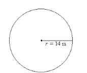 Circle (1)