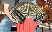 A   accordian