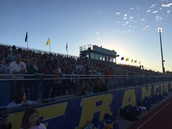 Packed Stands For Powder Puff