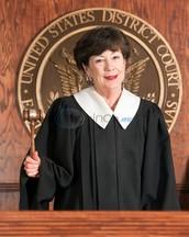 Magistrate Judge