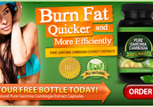 Pure Garcinia Cambogia Extract helps you to Lose Weight