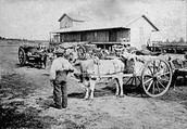 History of the Red River Cart!