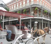 Stroll the French Quarter