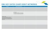 Debit Networks
