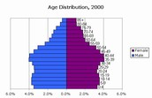 Population pyramid of United States