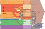 Complex Flow Chart Process