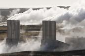Geothermal Plantation