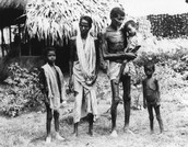 Causes and Results of the Bengal Famine