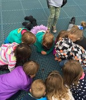 Preschool examining a butterfly at recess.