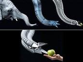 Bio-mimicry
