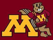 #10: Minnesota