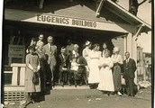 What is the process of eugenics?