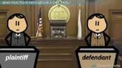 The Plaintiff and Defendant