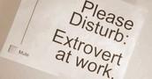 introvert/extrovert/ambnivert