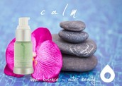 Natural Spa Products made in the USA!
