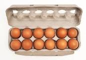 Estuches porta huevos