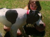 Tenia la perro.