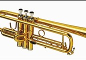 My favorite instrument is a trumpet.