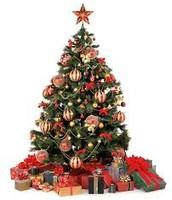 Christmas needs a Christmas trees