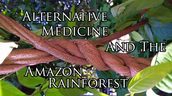 The Amazon Provides Many Cures For Many Diseases