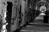 Conditions of Prisons and Asylums in the 1800s