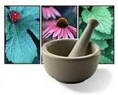 Salute naturale – alimentazione, fitoterapia e naturopatia