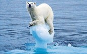A polar bear riding an ice burg