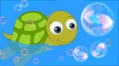Tiny Tim the Turtle