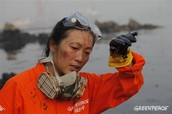 Environmental - 環境保護主義者 - Japanese