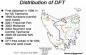 Distribution of DFTD