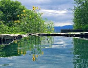 Soaking Pond